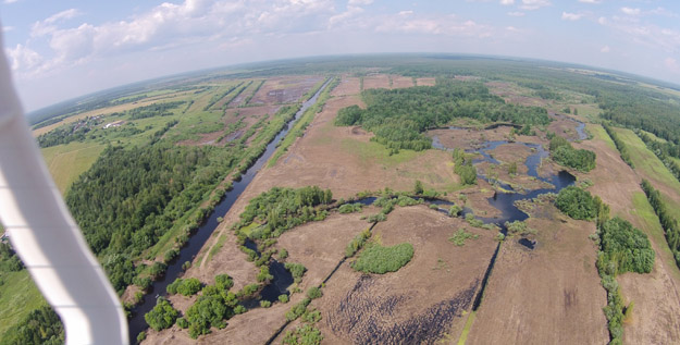 Drying floodplain of the Dubna River near Sushchovo Settlement. Photo by A.V.Makarov